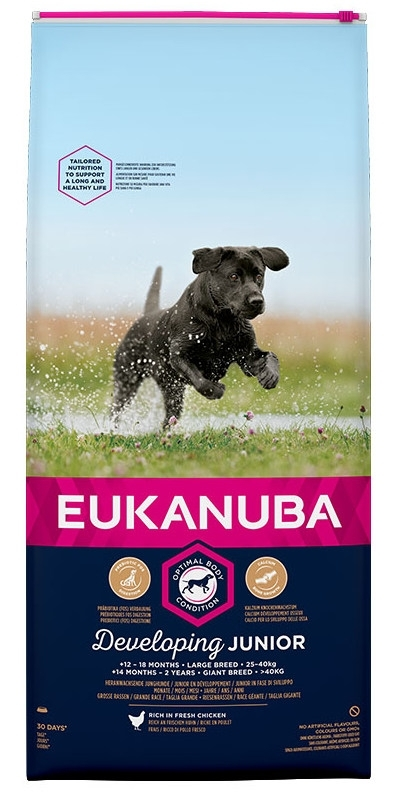 Eukanuba Junior Large Breed kutyatáp, táp kutya, kutyaeledel