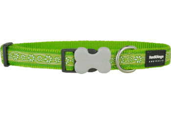 Red Dingo nyakörv Design Daisy Chain lime green (15 mm x 24-37 cm)