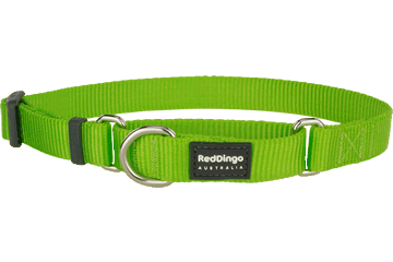 Red Dingo Classic félfojtó nyakörv kutyának lime green (20 mm x 33-50 cm)
