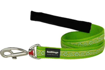 Red Dingo póráz Design Daisy Chain lime green